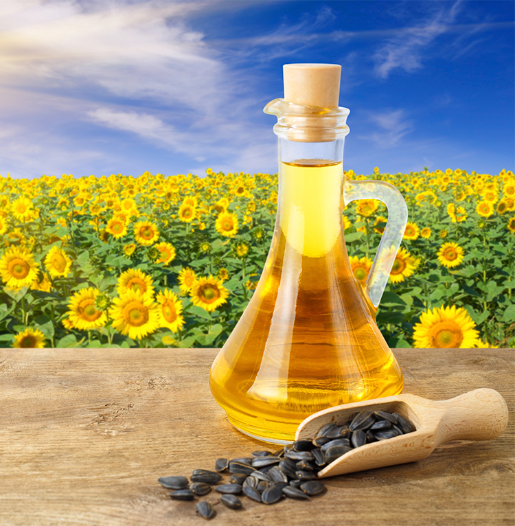oil supplier image sunflower